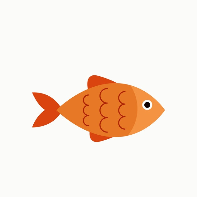 symbols in dreams that can predict that you're pregnant: a fish