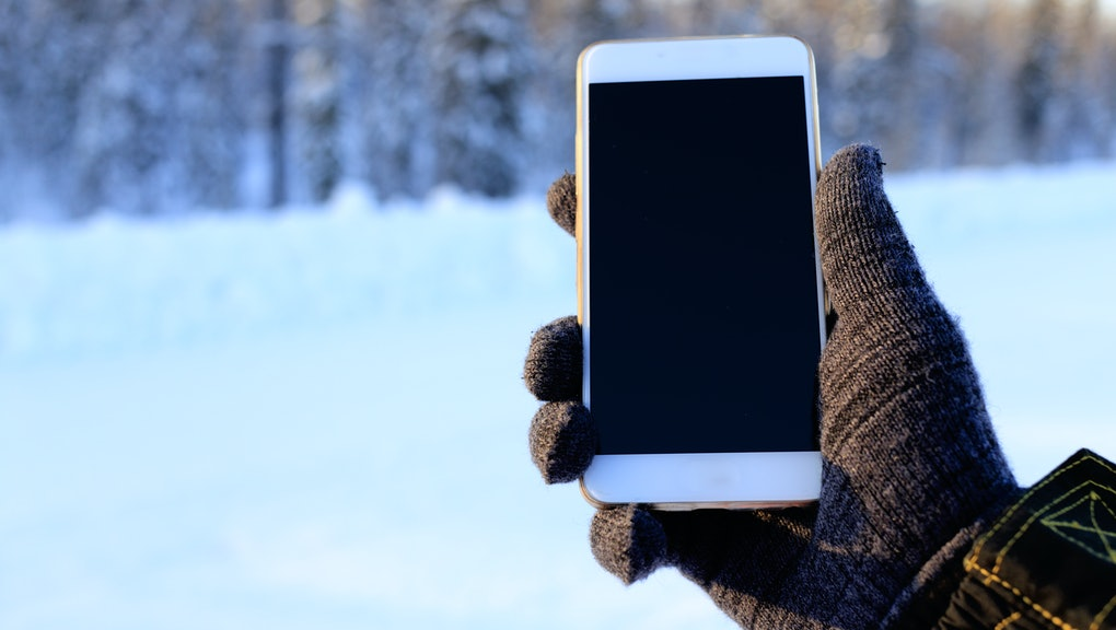 smartphone in hand in the woods