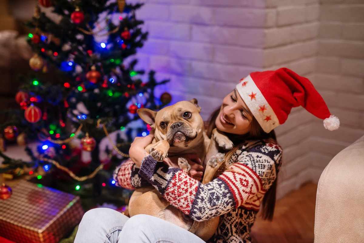 A woman wearing a Santa hat and holiday sweater smiles and holds her dog next to Christmas presents ...