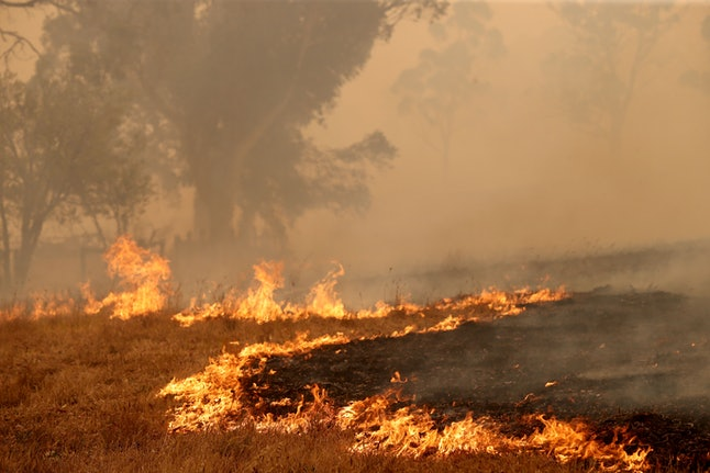 The Cuddle Creek fire destroys a plot of land at Woodside, in the Adelaide Hills in Adelaide, Australia, 20 December 2019. Two bushfires are burning out of control around the Adelaide Hills, prompting emergency warnings from the Country Fire Service.