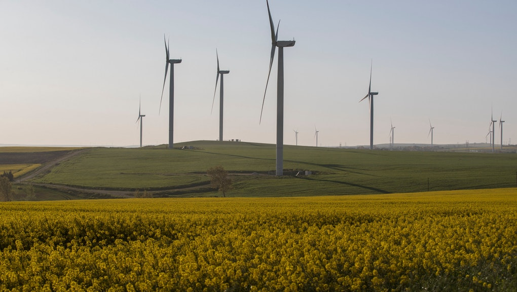 A view on wind turbines and a canola field in Istanbul, Turkey 22 April 2018. Turkey expands the capacity of its wind power by building more wind farms and launching the Wind Energy Renewable Energy Resource Areas (YEKA) project for wind power investment in the country in 2017 worth up to one billion US dollars, according to reports.