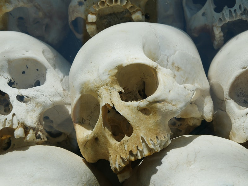 a human skulls in a pile