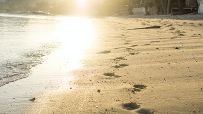 footprints on sunny beach