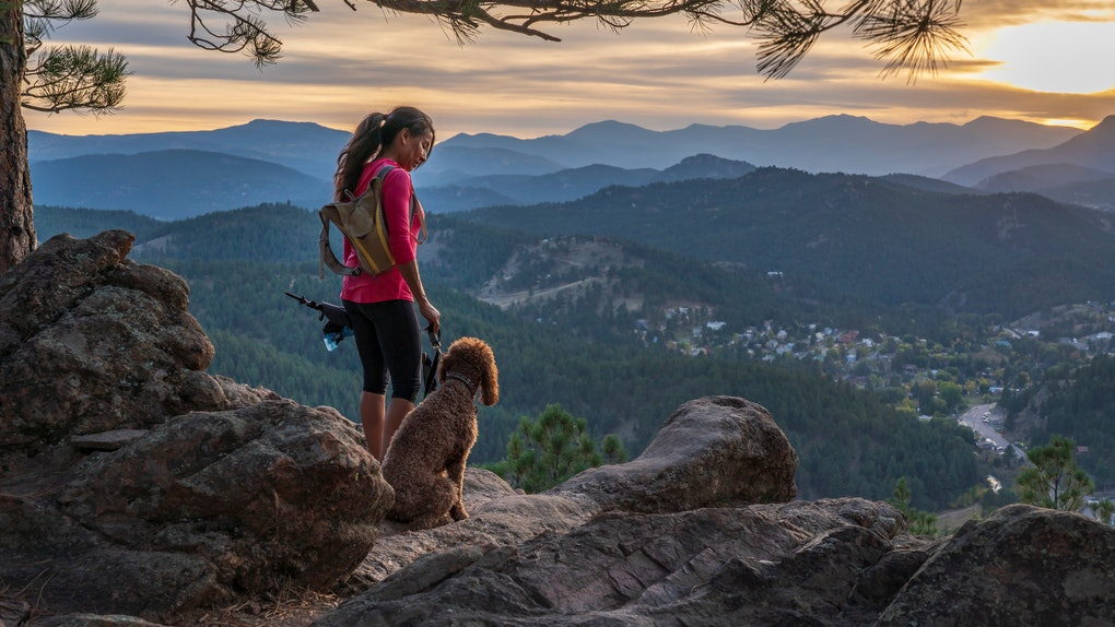 A hispanic woman is hiking with a dog, in the Rocky Mountains, of Colorado.