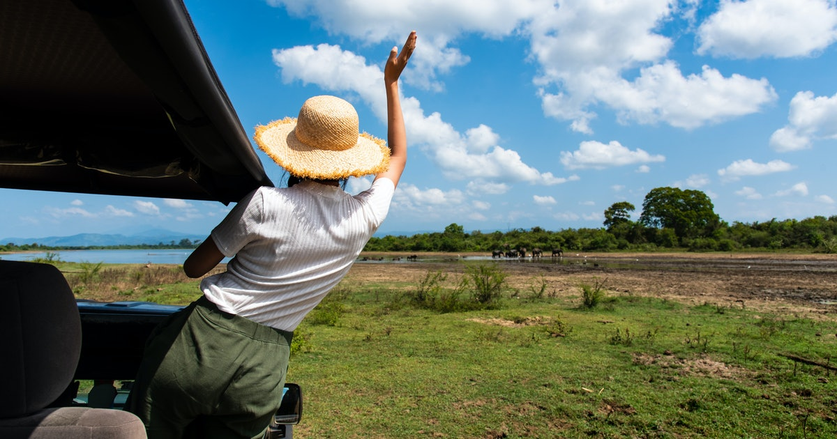 8 Safari Trips To Add To Your Bucket List This Summer