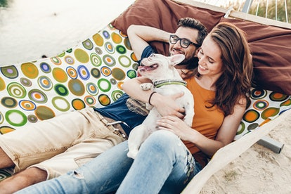 Happy young family portrait, cute stylish woman holding happy bulldog near handsome man in sunglasses while relaxing on a hammock on the beach