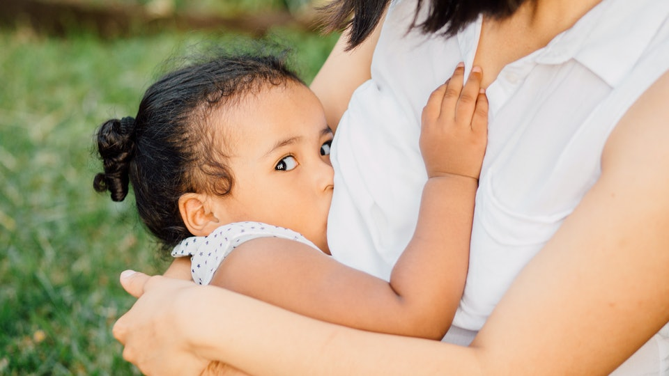 Young unrecognizable mother breastfeeding a dark-skinned toddler baby girl in nature - maternity concept. Little hispanic girl looking at camera. Close up