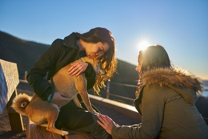 couple outside playing with pet dog