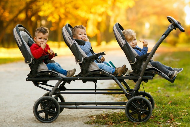 The happy triplets sit in a  baby stroller and eat cookies at autumn park