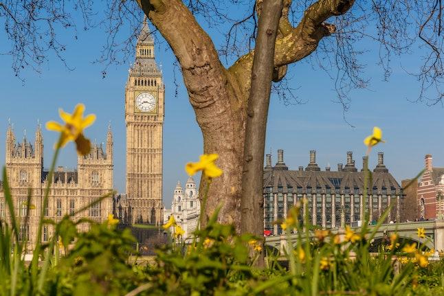 Spring sunny morning in Westminster, London