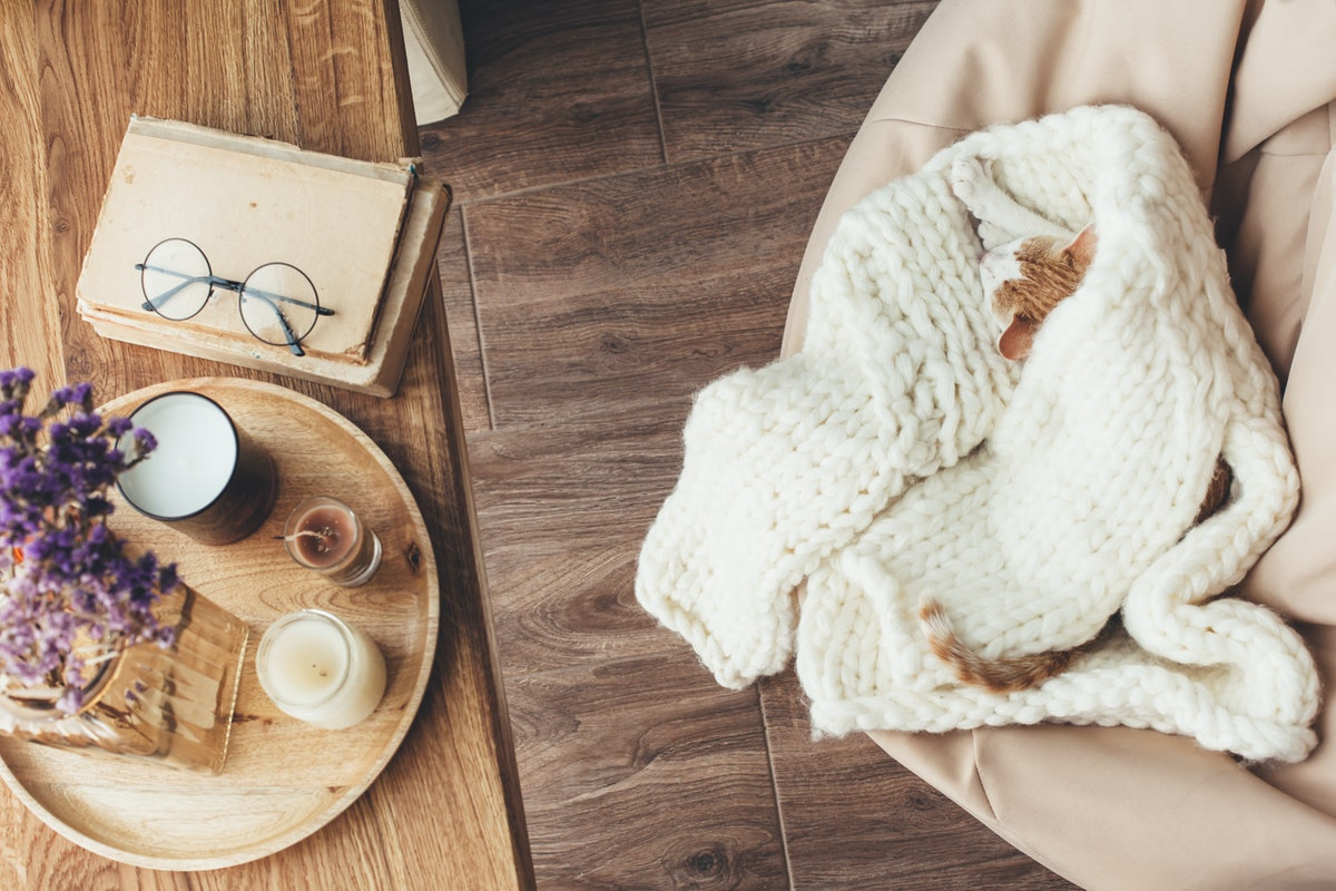 Ginger kitten sleeping on knitted woolen sweater. Wooden tray with home decor near the window. Fall ...