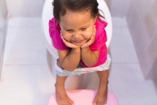 Toddler happy sitting on the toilet. Potty training.