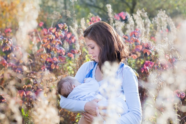 Young beautiful mother breastfeeding her baby in a meadow on a sunny day