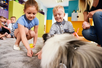 Kids playing with dog in the preschool
