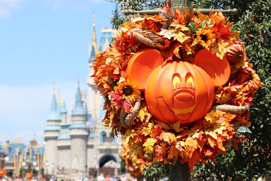 The Disney Store will be holding a Haunted Halloween Party every Saturday and Sunday for the rest of...