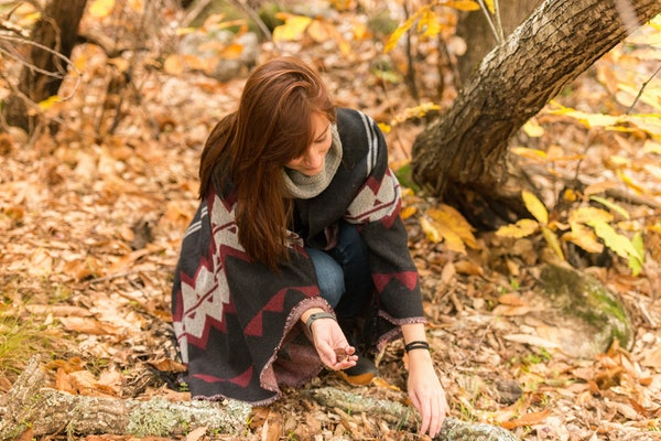 A young woman with reddish hair picks up the chestnuts fallen on the ground in an autumnal forest of yellow and ocher colors in Montanchez, Caceres, Extremadura.