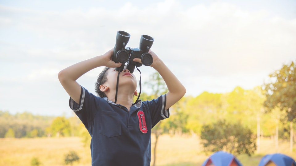 Young asian boy watching birds by binoculars at camping site ,study outside classroom concept.