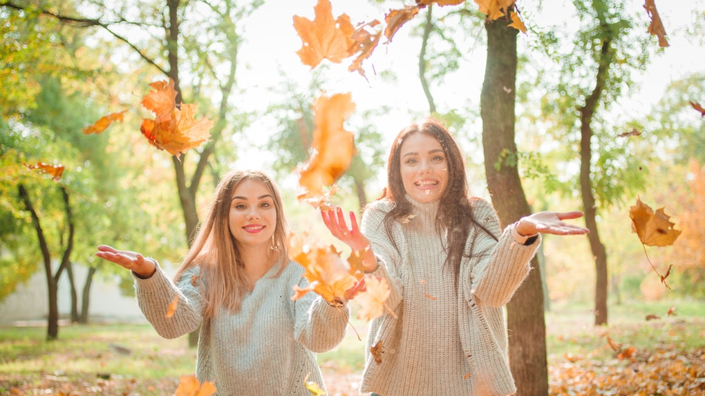 Close-up of beautiful girls, twins sisters, in autumn park
