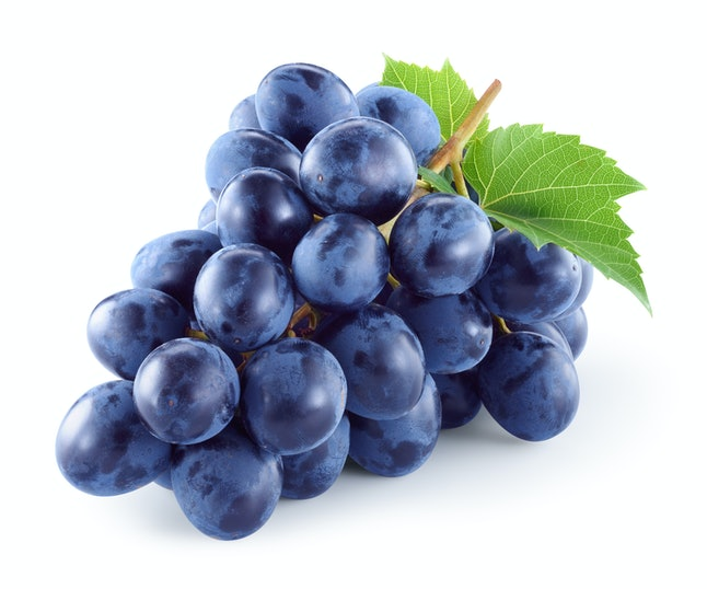 Dark blue grape with leaves isolated on white background. With clipping path. Full depth of field.