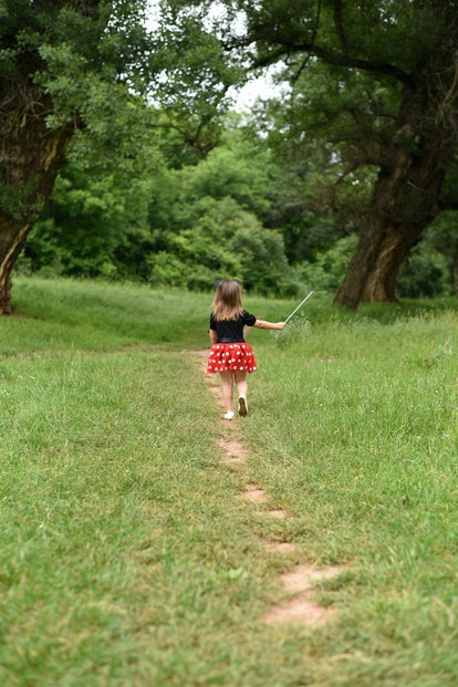 Little girl is walking in the woods. Child in red