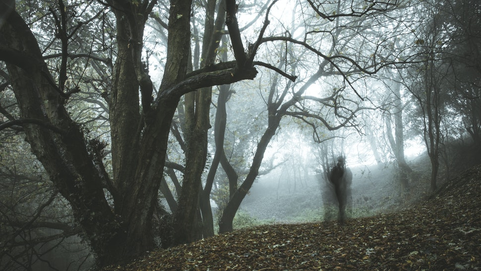A spooky, ghostly figure on a path in a foggy forest in winter with a dark muted edit.