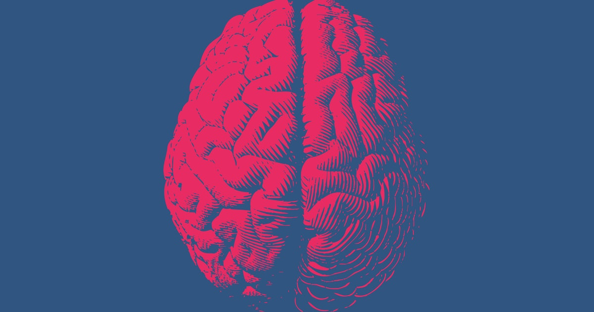 Brain variability could lead to worse executive functioning