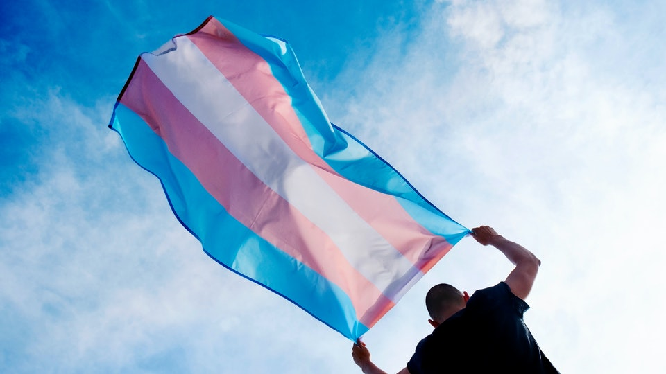 a young caucasian person, seen from behind, holding a transgender pride flag over his or her head against the blue sky