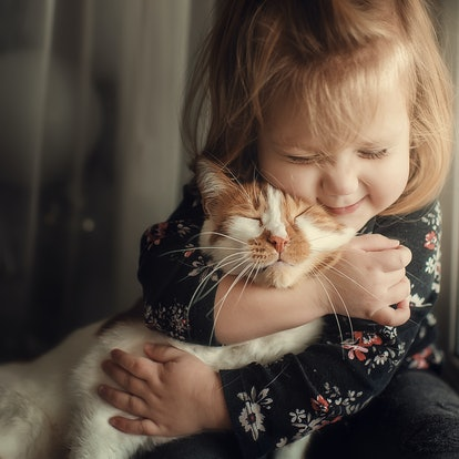 Portrait of a small cute child with a bald head that embraces with tenderness and love a red cat and smiles with happiness