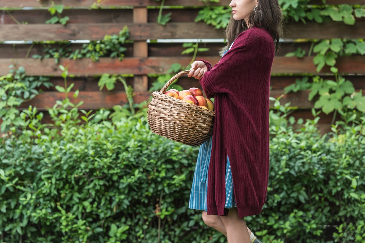 beautiful girl holding wicker basket with fresh picked apples