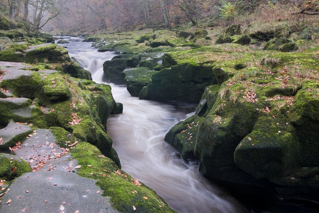 The Strid in Strid Woods near Bolton Abbey in Wharfedale, in the Yorkshire Dales in autumn