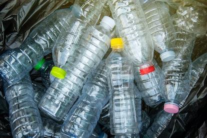 Plastic water bottle pile in black garbage bags.