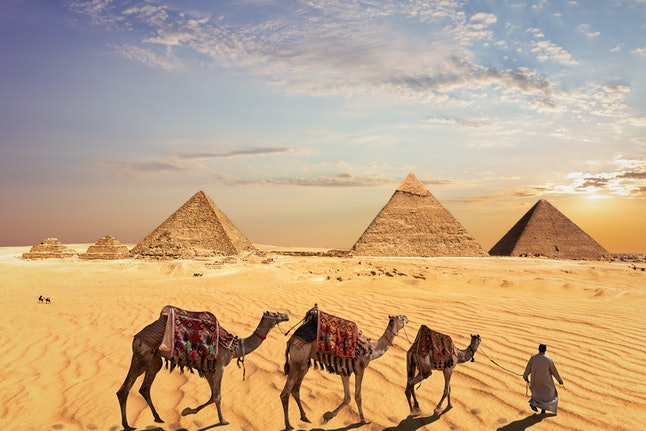 Camel caravan near the Great Pyramids of Giza in Egypt
