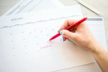 woman hand holds red highlighter with temperature mark on calendar, Concept of fertility chart, trying to have baby and natural contraception, Reminder Ovulation in graph, Planning of pregnancy