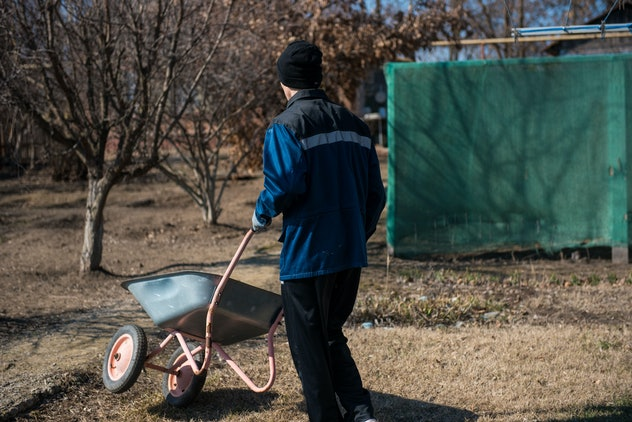 A man with a garden wheelbarrow