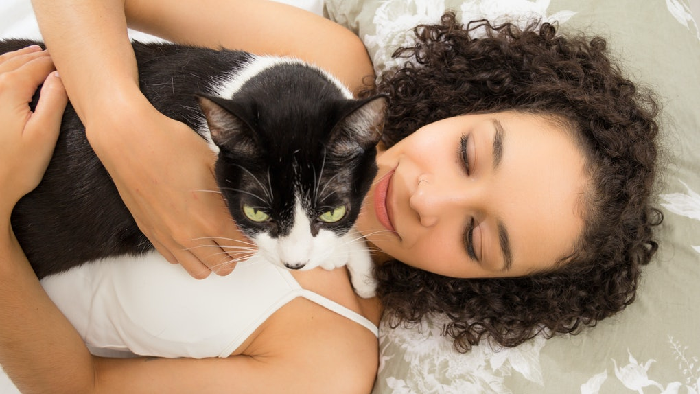 Overhead of black woman enjoying and cuddling cute kitten with green eyes in bed. Concept of love to animals, care, tranquility, peace