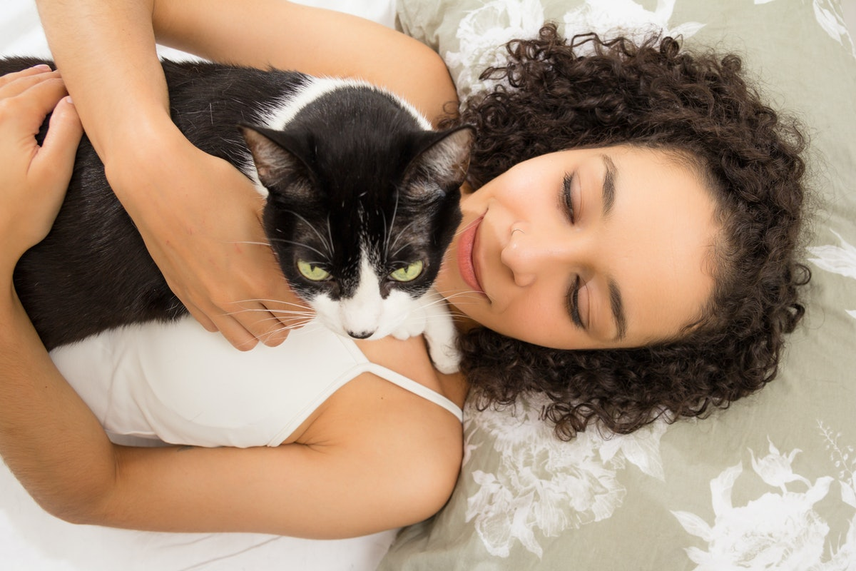 Overhead of black woman enjoying and cuddling cute kitten with green eyes in bed. Concept of love to...