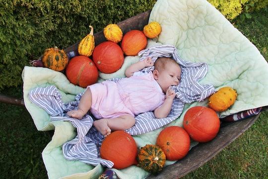 Newborn baby lying between pumpkins on old wheelbarrow.