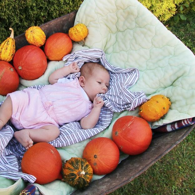 Newborn baby clmbs between pumpkins on old whellbarrow.