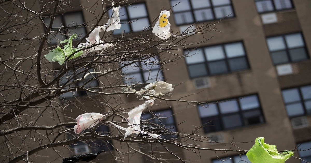 Plastics and climate change are more deeply linked than you may think