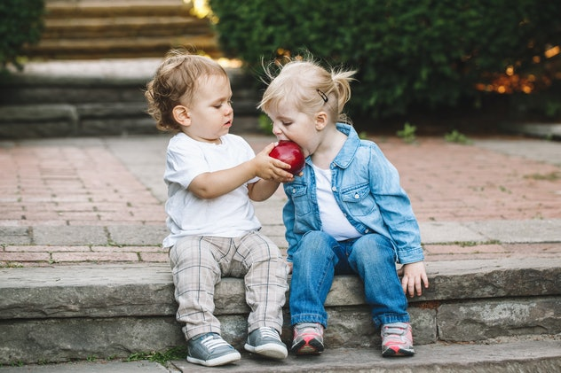 Group portrait of two white Caucasian cute adorable funny children toddlers sitting together sharing...