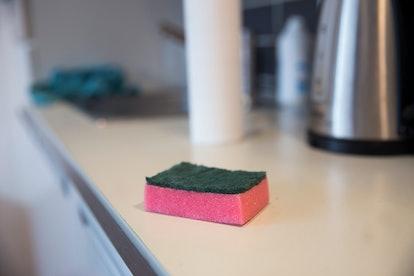 sponge in the kitchen