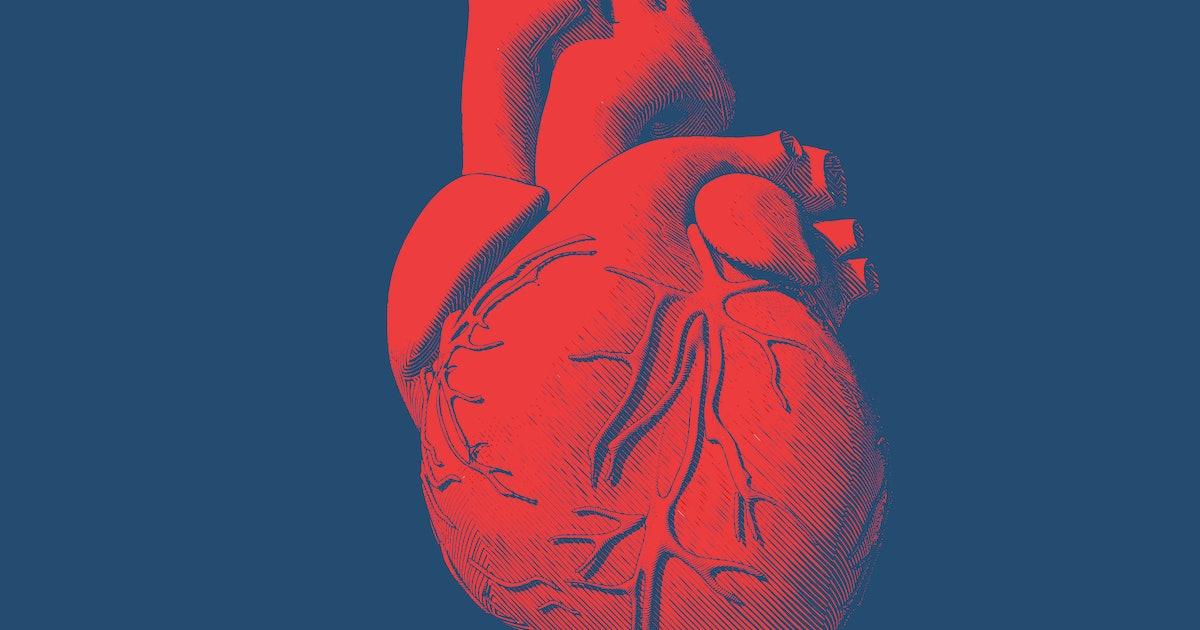 3D-printed miniature human heart presents possibilities for future artificial transplants