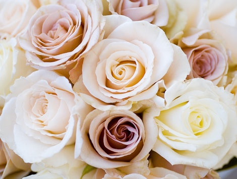 Bridal bouquet of beautiful Roses for a wedding