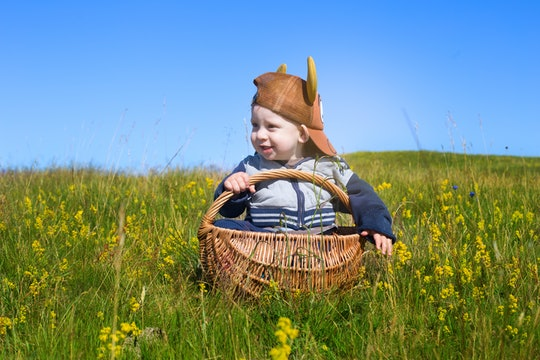 portrait of adorable baby toddler sitting in picnic basket on rural field with flowers in south swed...