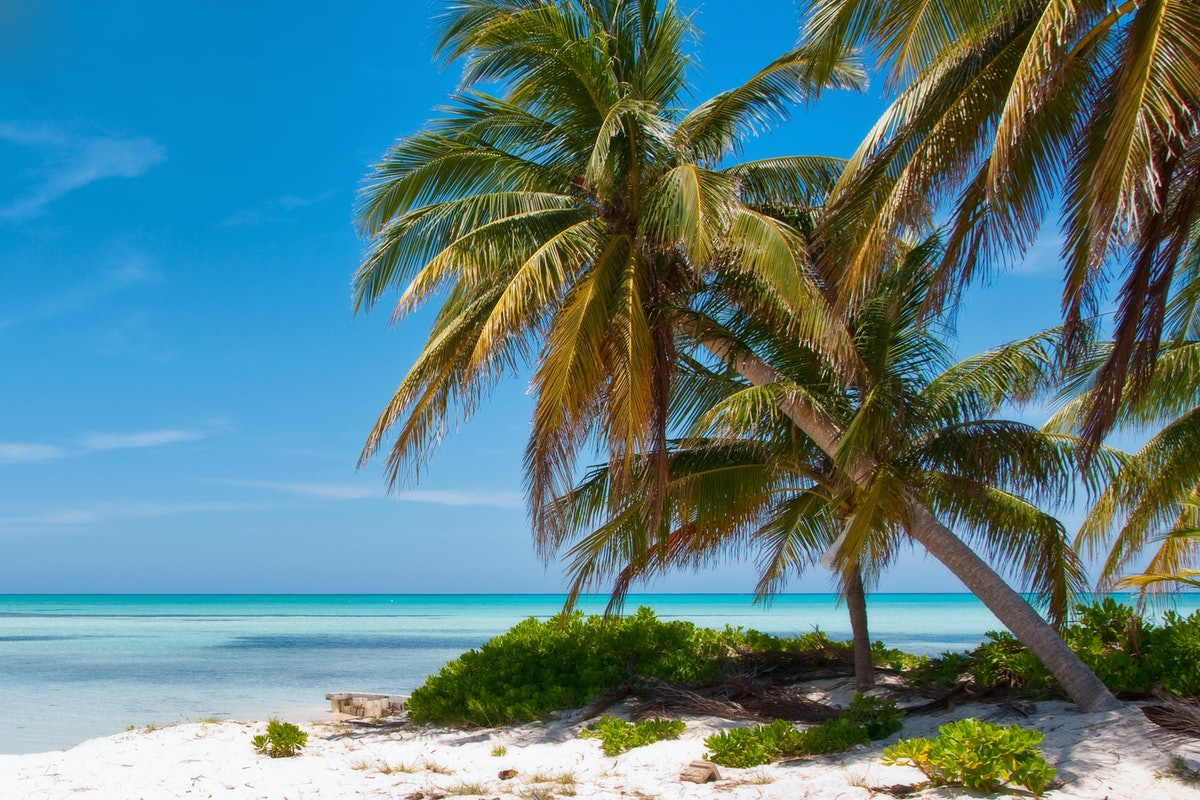 Dollar Flight Club's Jan. 16 Deals To The Cayman Islands will save you a lot of cash on your transpo...