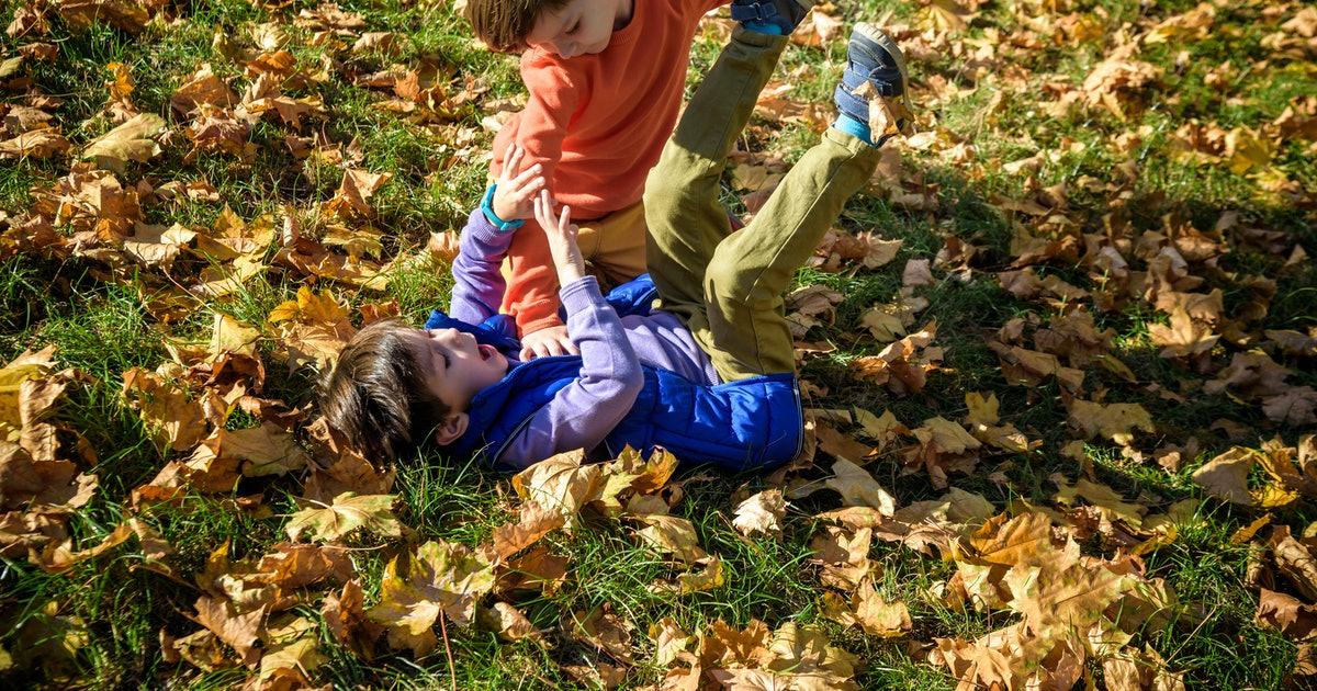 Toddler Brothers Are Always Fighting As A Way To Emote, Experts Say
