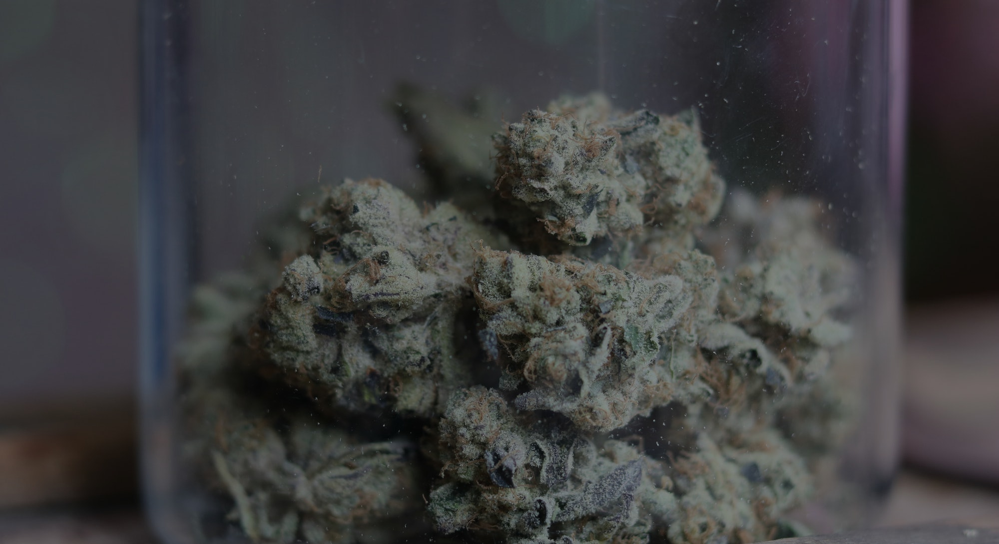 A up close photograph of an isolated glass jar of cannabis with a blurred background. Crystal trichomes on nugs.