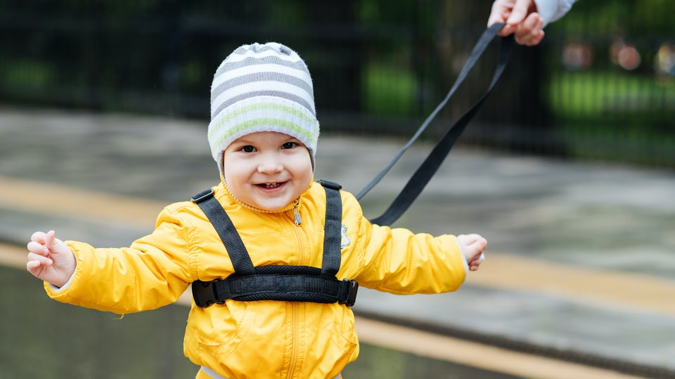 a toddler boy attached to a harness leash