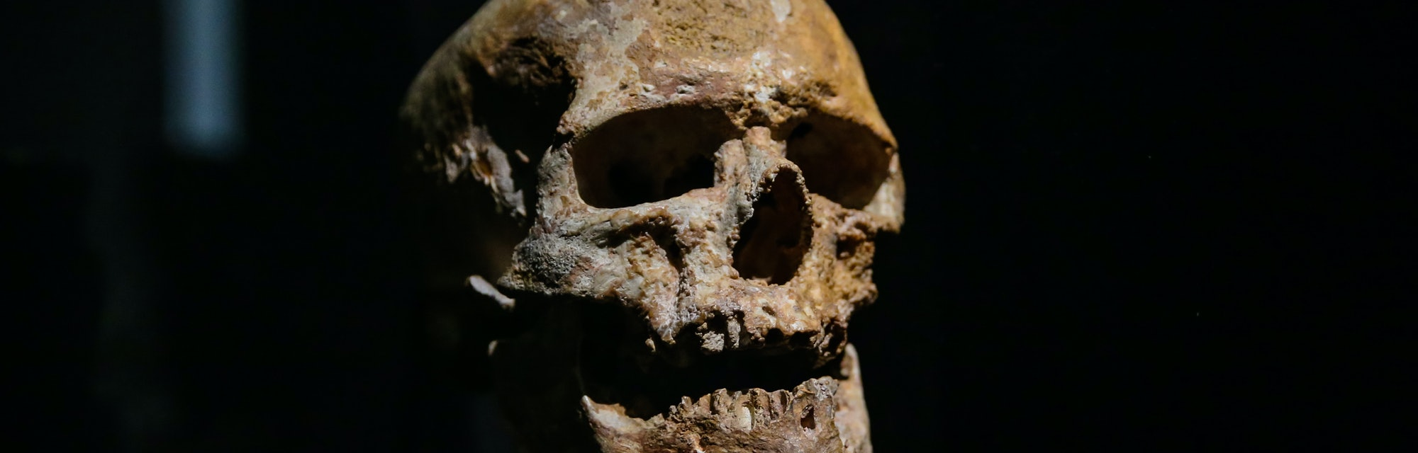 Ancient human skull against a black background