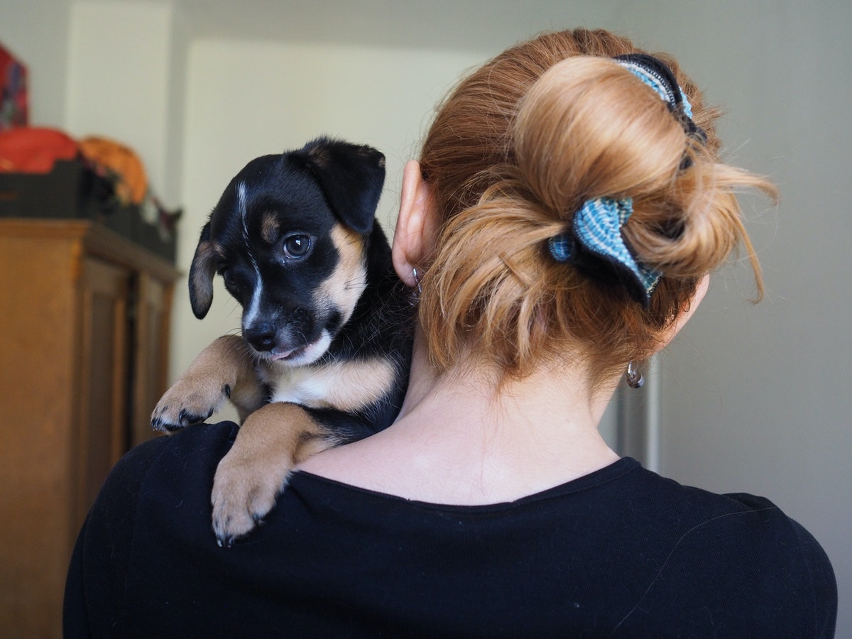 A woman faces a wall while holding her adorable puppy on her shoulder.
